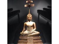 Online Yoga classes (gentle yoga, restorative, mindfulness, nidra)