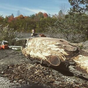 Custom Portable Sawmill Service. Great Rates, Quality Sawmilling Kitchener / Waterloo Kitchener Area image 6