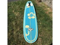 Custard Point 9ft Noserider Longboard Surfboard