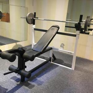 Olympic style bench press,shoulder press,squatrack all-in-one