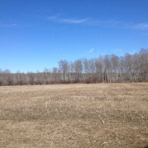 Prime Hunting Location East of Carrot River