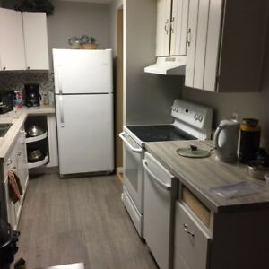 Shared room for rent, needs male student room mate.  $325