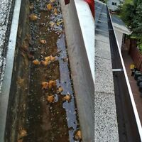 **** Superior Eavestrough Cleaning ****