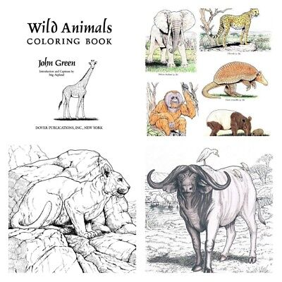 Animal Painting Art Coloring Books For Adults Relaxation Colors Stress Relief