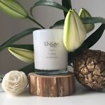 Elysian Candle Co