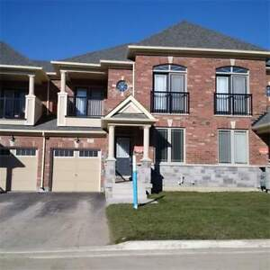 Brand New Town House for Rent in Queensville