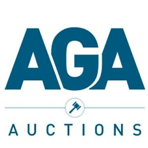Professional Auctioneer