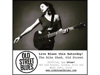 Blues Duo available for live shows!