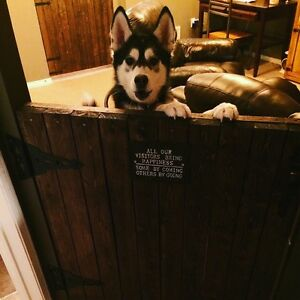Barn door baby/dog gates