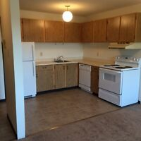 Spacious and Pet Friendly 1 Bedroom Suite on the Second Floor!