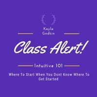 Intuition 101 Intuitive Development Class