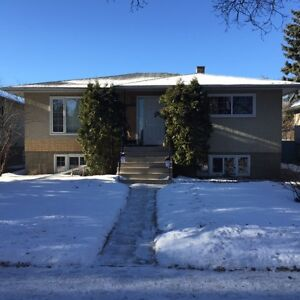 Cat friendly, 3 bedroom house w garage and yard, very quiet!