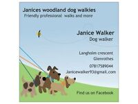Dog walker and home boarding find me on Facebook janices woodland dog walkies