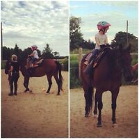 Horse Boarding Paisley-Walkerton Area Western/English All Ages