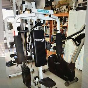 Gym set for sale Seven Hills Blacktown Area Preview