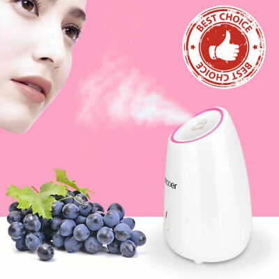 Best Aromatherapy Ionic Nano Facial Steamer Professional Portable Machine (Best Home Steamers)