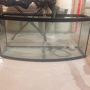 70G Bow front + filter