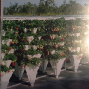 Hydroponic Stacking Unit (Package Deal)