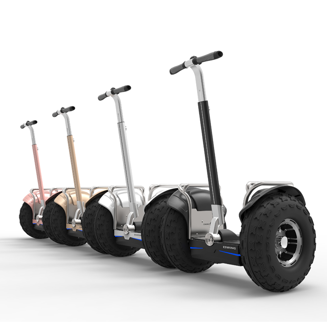 Eswing 2 Wheeled Off Road Electric Scooter ES6 with 19 inch