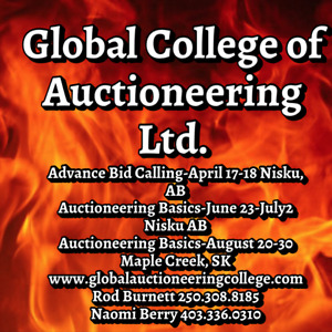 Auctioneer College - Champion Instructors