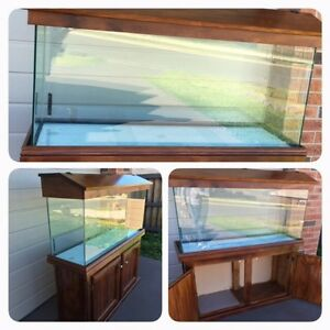 Fish tank Gillieston Heights Maitland Area Preview