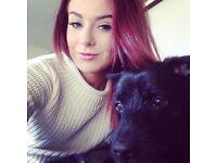 Anna's Animal Assistance - Dog Walking & Sitting