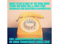 Salon Assistant & Apprentice wanted