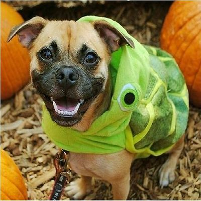 Turtle Halloween Dog Pet Costume Medium (New with Tags)](Turtle Pet Costume)