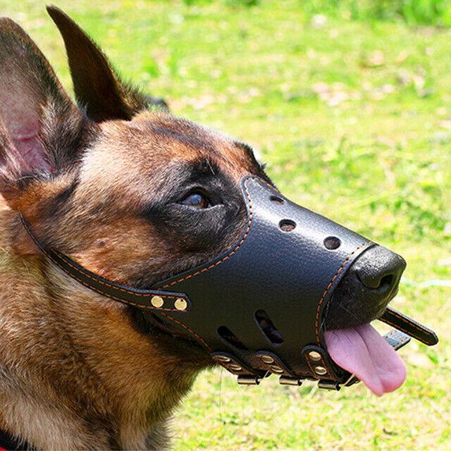 Mask Pet Dog Muzzle Anti Bark Bite Chew Safety for Small Lar