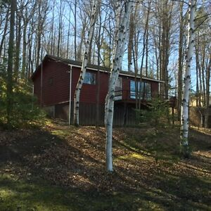 Near Rice Lake - cottage for sale Kents Bay