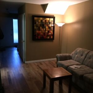 Basement room 141 Bedford, all inclusive shared $325 each