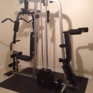 WEIDER 1150 Home Gym and Fitness exercise complex 2