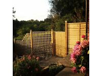 Fencing and Landscaping/Building