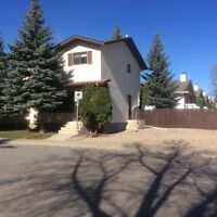 * NEWLY RENOVATED GREAT LOCATION:  2 STOREY 3 BEDROOM DUPLEX