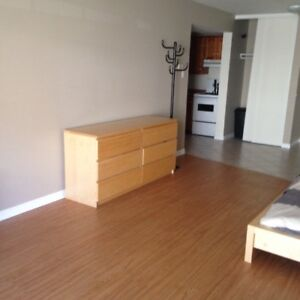 Bright Spacious, Downtown  Bachelor for Sept.