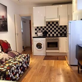 Bright and Modern studio flat to rent in Bayswater