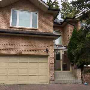 willowdale detached house for rent