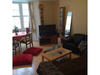 Need a lovely double room by the sea? Amazing housemate needed in central Brighton!