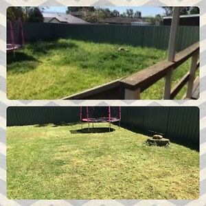 Yard Mowing Woodcroft Blacktown Area Preview
