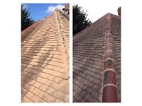 T.A.M Roofing Services.