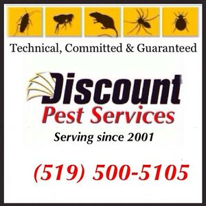 Discount Pest Control (Affordable, Guaranteed & Licensed)   Cambridge Kitchener Area image 2