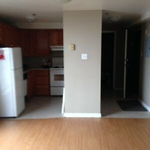 Bright spacious Bachelor Downtown for Sept