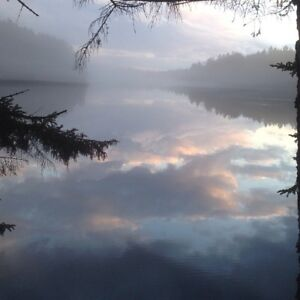Waterfront & Cottage Area Lots With Lake Access  FALL SALE