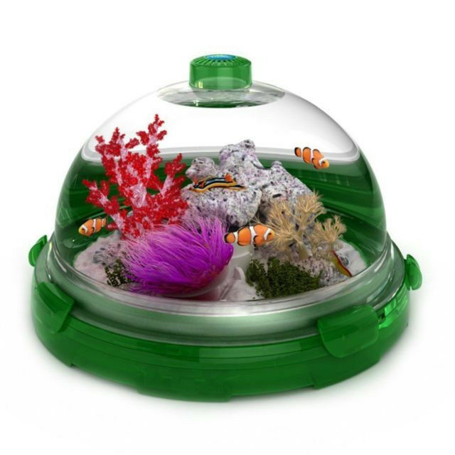 Set of Plastic Injection Molds for Bio-Bubble Pet Habitats