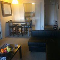 Sub-leasing 3 1/2 apartment close to concordia university