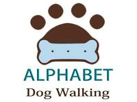 The 'Friendly Flexible' Dog Walking - Day Care service - Wimbledon