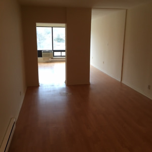 Bachelor apartment - downtown Barrie