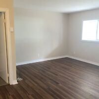 Fully Renovated Bachelor! December 1st Move In!