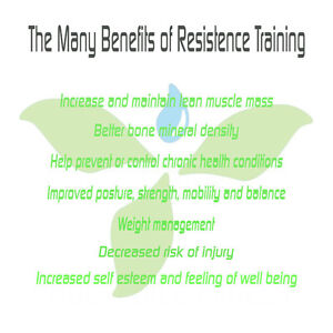 In Home Personal Training London Ontario image 2