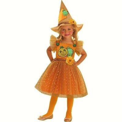 Lil' Scarecrow Fairy Toddler 2 Piece Halloween Costume 2T (New with Tags)